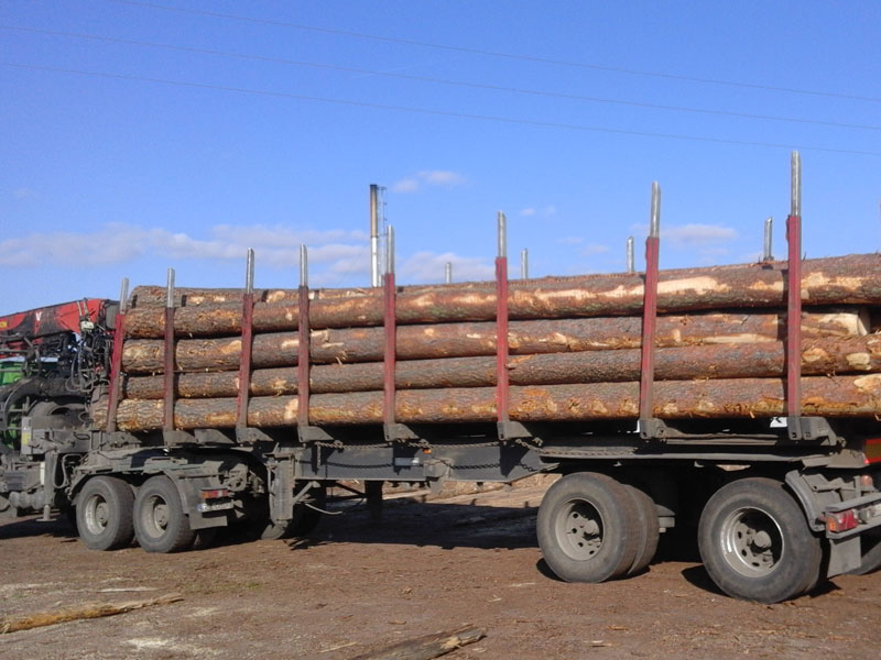 Lorry with logs