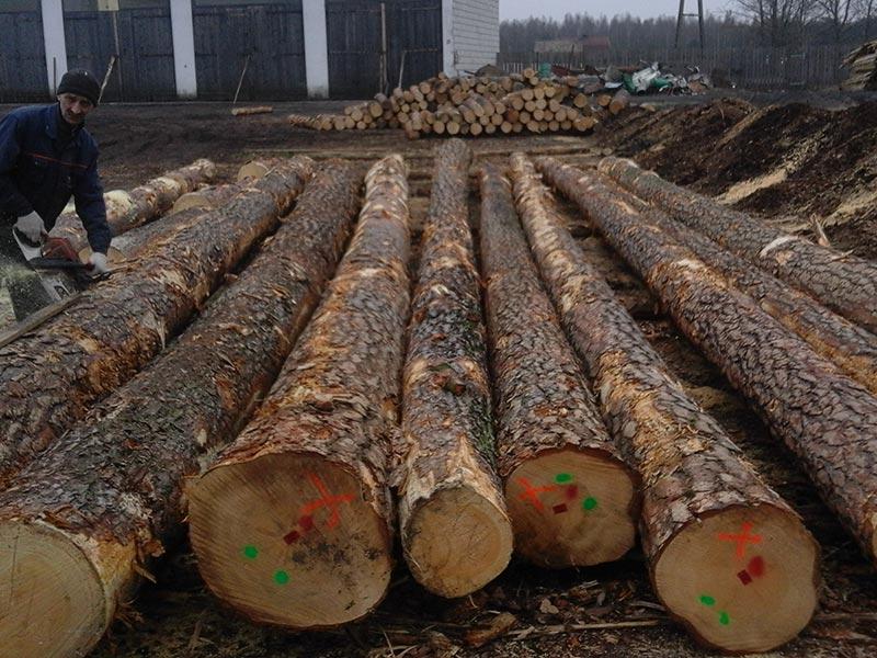 Sorting of Logs